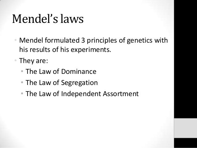 Why did Mendel use pea plants in his experiments?