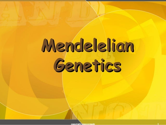 Mendelelian Genetics   copyright cmassengale   1