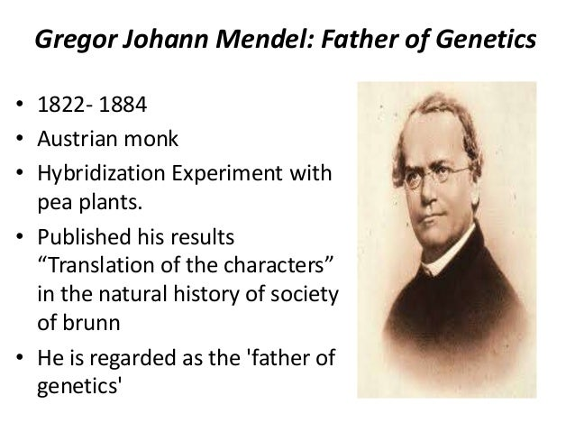 why is mendel the father of genetics