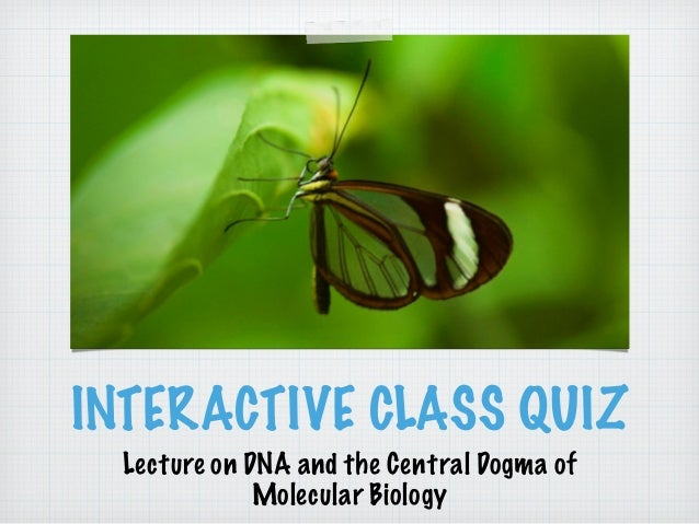 INTERACTIVE CLASS QUIZ  Lecture on DNA and the Central Dogma of  Molecular Biology