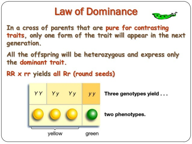 law of dominance - photo #1