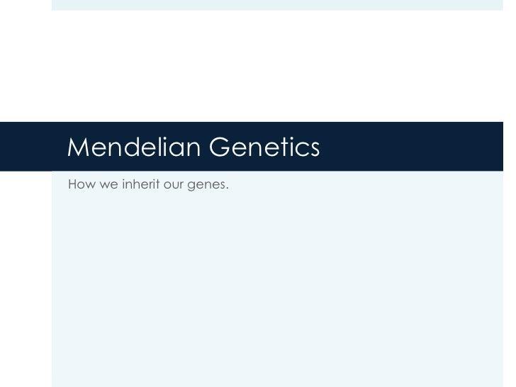 Mendelian GeneticsHow we inherit our genes.