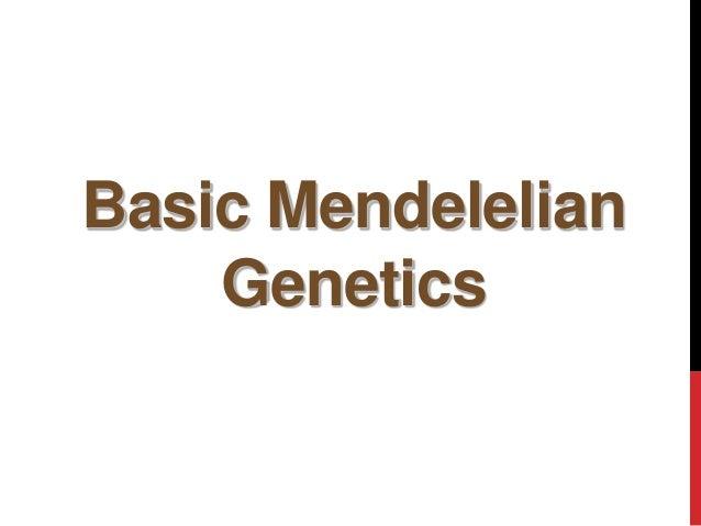 Basic Mendelelian Genetics copyright cmassengale 1