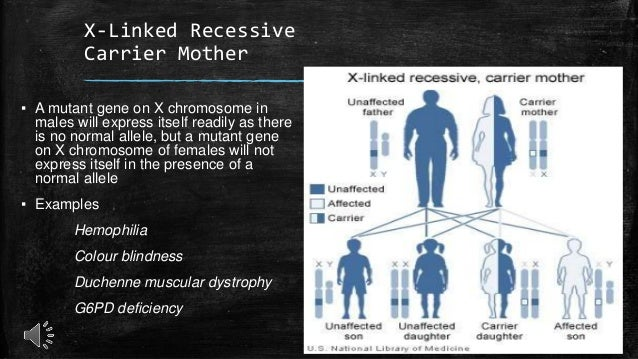 is hemophilia sex linked recessive or dominant in Nebraska