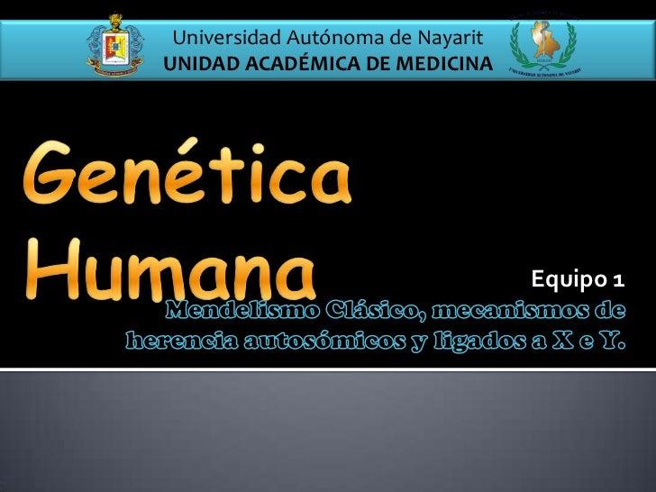 Universidad Autónoma de NayaritUNIDAD ACADÉMICA DE MEDICINA                                   Equipo 1