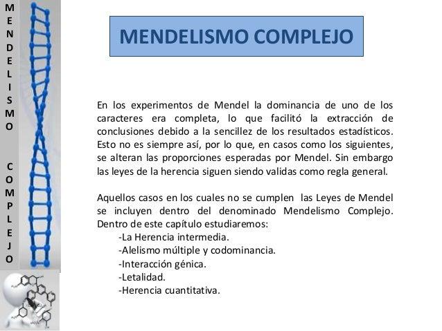 M E N D E L I S M O  C O M P L E J O  MENDELISMO COMPLEJO En los experimentos de Mendel la dominancia de uno de los caract...