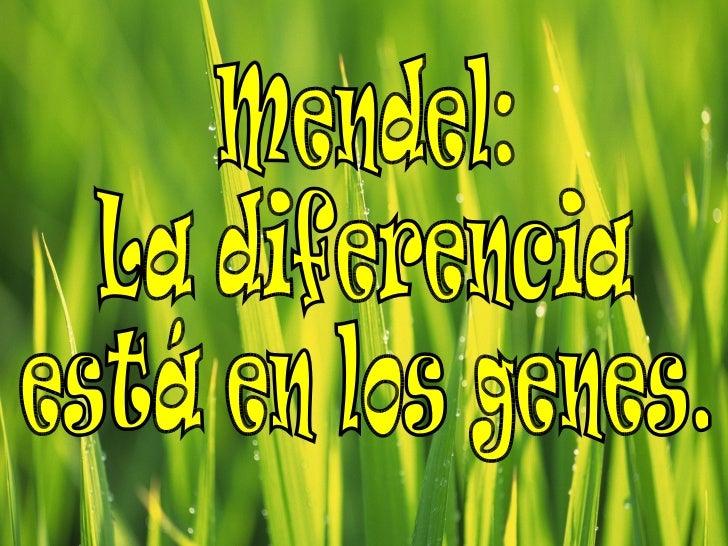 Mendel: La diferencia  está en los genes.