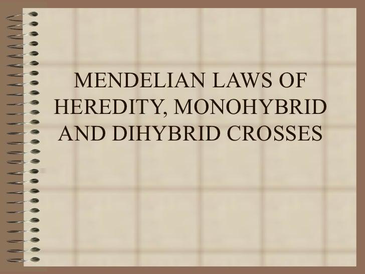MENDELIAN LAWS OFHEREDITY, MONOHYBRIDAND DIHYBRID CROSSES
