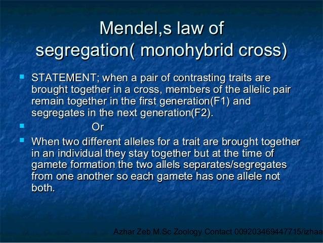 mendel s law of segregation monohybrid cross. Black Bedroom Furniture Sets. Home Design Ideas