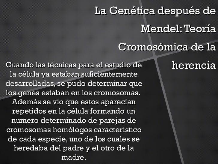Mendel (trabajo completo)