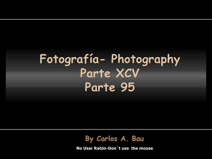 Fotografía- Photography Parte XCV Parte 95 No Usar Ratón-Don´t use  the mouse By Carlos A. Bau