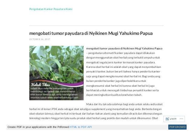 Mengobati kanker payudara secara herbal