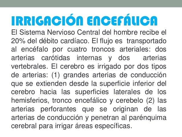 IRRIGACIÓN ENCEFÁLICA El Sistema Nervioso Central del hombre recibe el 20% del débito cardíaco. El flujo es transportado a...