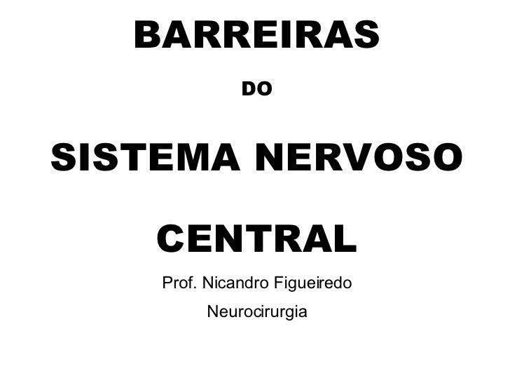 BARREIRAS DO SISTEMA NERVOSO CENTRAL Prof. Nicandro Figueiredo Neurocirurgia