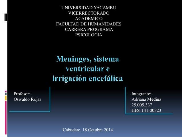UNIVERSIDAD YACAMBU VICERRECTORADO ACADEMICO FACULTAD DE HUMANIDADES CARRERA PROGRAMA PSICOLOGIA Integrante: Adriana Medin...