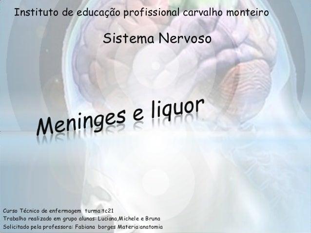 Instituto de educação profissional carvalho monteiro                                    Sistema NervosoCurso Técnico de en...