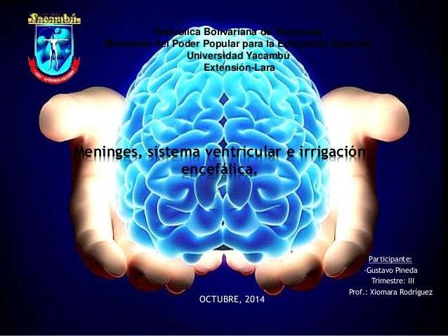 Republica Bolivariana de Venezuela  Ministerio del Poder Popular para la Educación Superior  Universidad Yacambú  Extensió...