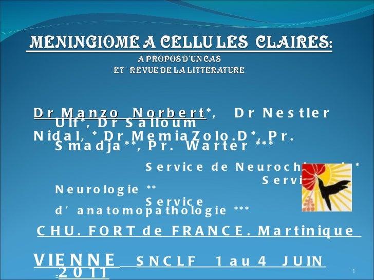 Dr Manzo  Norbert *,  Dr Nestler Ulf*, Dr Salloum Nidal, * Dr MemiaZolo.D*, Pr. Smadja**, Pr.  Warter *** Service de Neuro...
