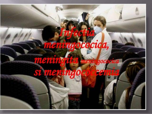 Infectia meningococica, meningita meningococica si meningococcemia