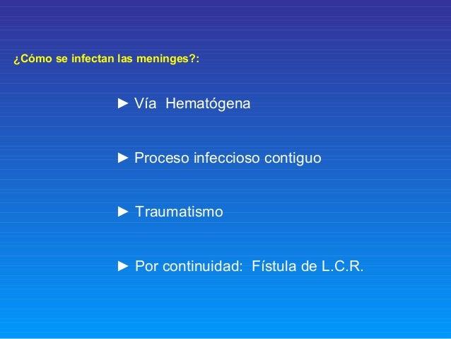 ¿Cómo se infectan las meninges?: ► Vía Hematógena ► Proceso infeccioso contiguo ► Traumatismo ► Por continuidad: Fístula d...