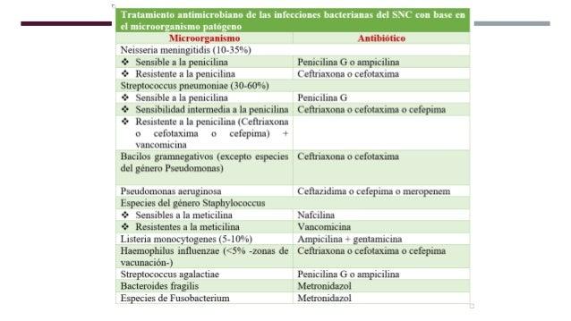 La meningitis micótica o fúngica se trata con tratamientos prolongados de medicamentos antifúngicos de dosis altas, que ge...