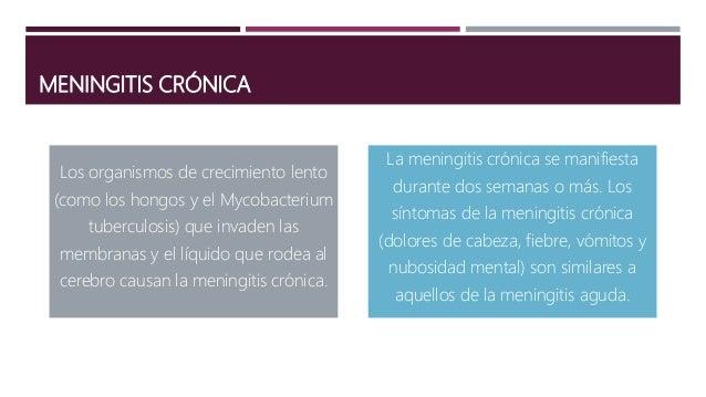 MENINGITIS FÚNGICA Se cree que el criptococo (Cryptococcus ) se al inhalar suelo contaminado con excrementos de aves El hi...