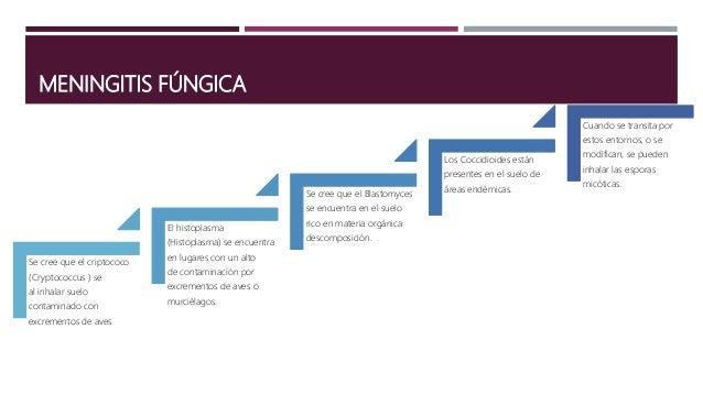 ETIOLOGÍA SEGÚN LA VIA DE INFECCIÓN, GRUPO ETARIO Y LOS FACTORES DEL HUÉSPED.