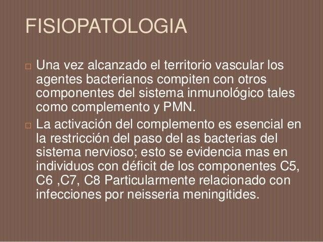 FISIOPATOLOGIA  El sitio exacto de ingreso de los gérmenes al SNC no es claro ( se proponen diferentes sitios como plexos...