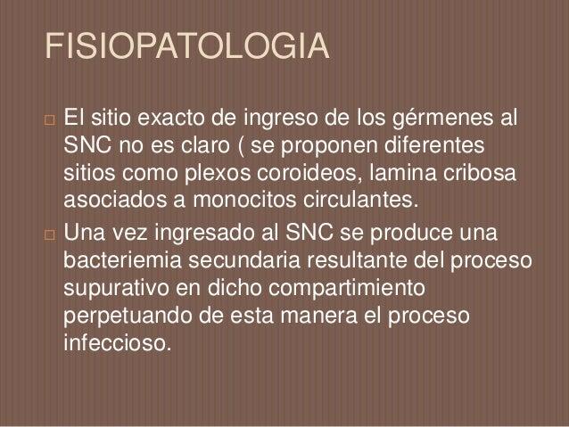 FISIOPATOLOGIA  Son varios los productos bacterianos (ej. acido teicoico, lipopolisacaridos, pared celular del s. pneumon...