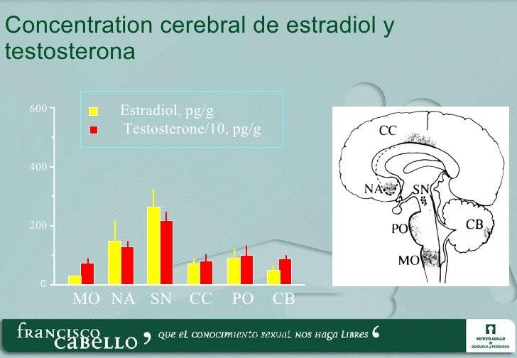 Concentration cerebral de estradiol y testosterona  600 400 200 0 MO NA SN CC PO CB Estradiol, pg/g Testosterone/10, pg/g ...