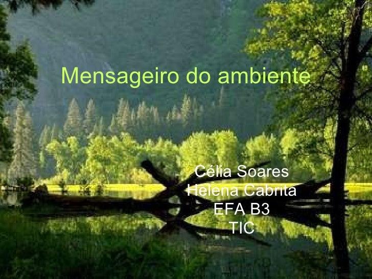 Mensageiro do ambiente Célia Soares Helena Cabrita EFA B3 TIC