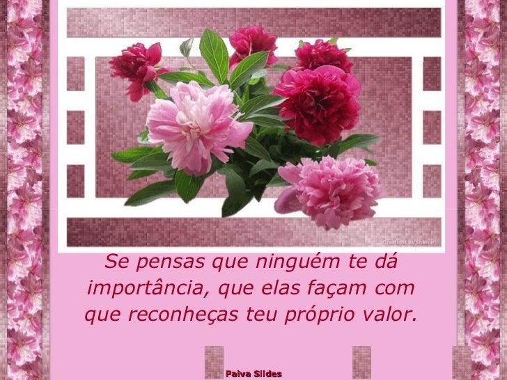 Mensagens Para Você: Mensagens Pps Dia Das Maes Flores Para Voce