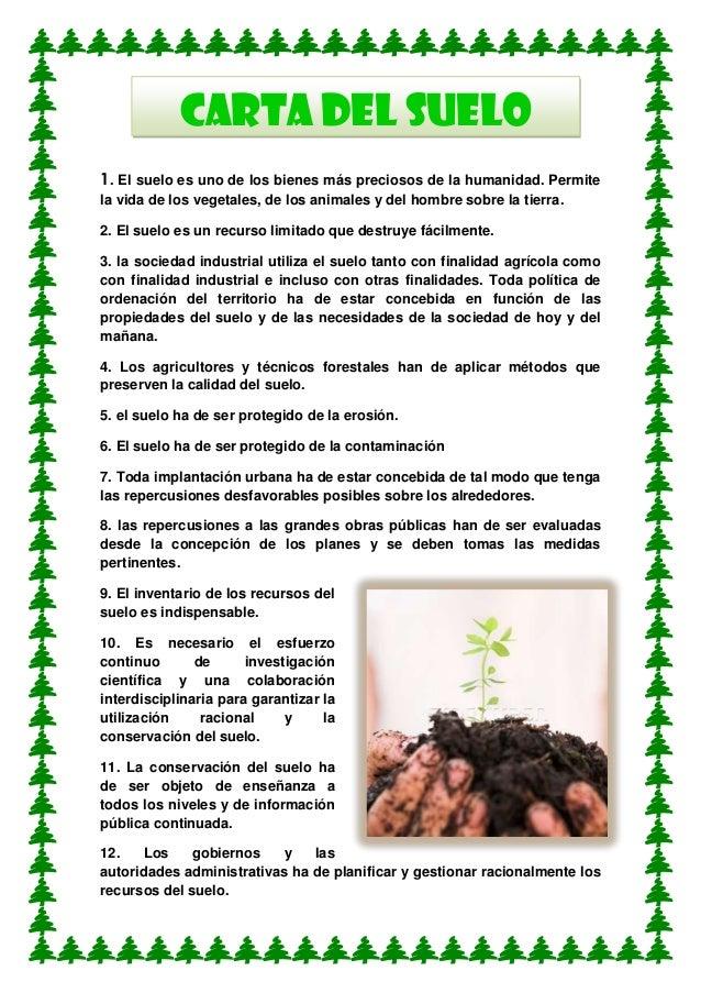 Mensajes del medio ambiente for 5 cuidados del suelo