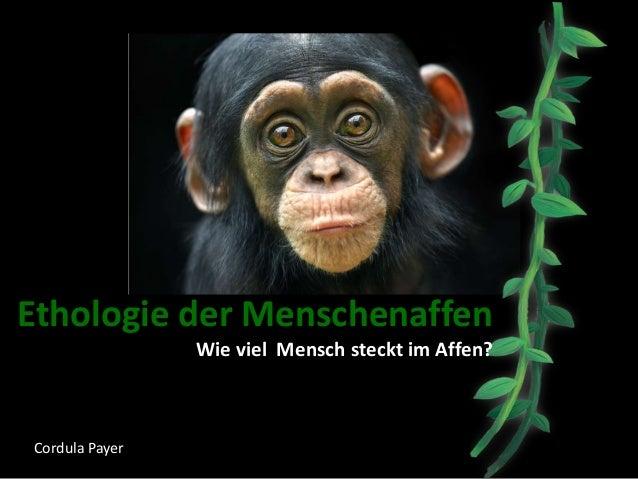 Ethologie der Menschenaffen Wie viel Mensch steckt im Affen? Cordula Payer