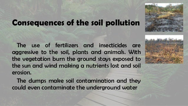 Uses and Limitation of Fertilizers | Plant Physiology