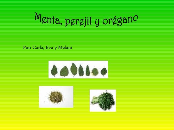 Menta, perejil y orégano Por: Carla, Eva y Melani