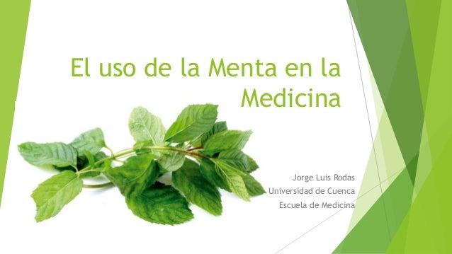 El uso de la Menta en la Medicina Jorge Luis Rodas Universidad de Cuenca Escuela de Medicina