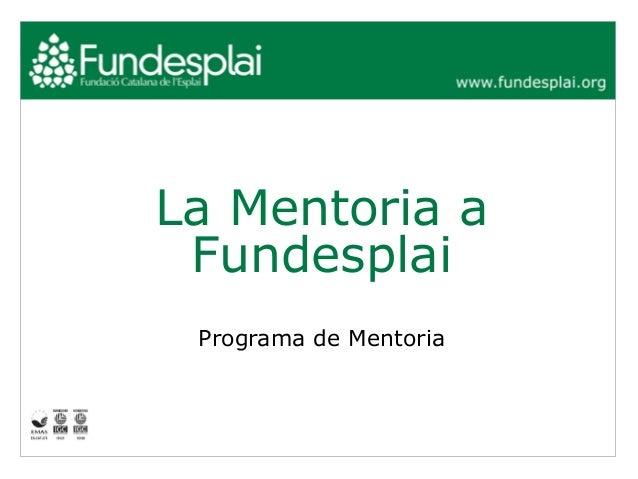 La Mentoria a Fundesplai Programa de Mentoria