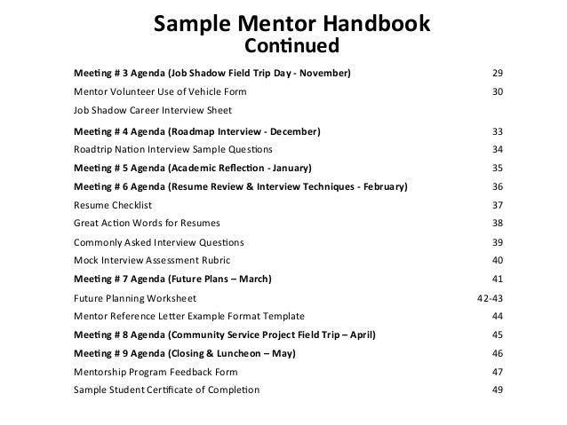 Data Mentoring