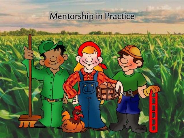 Mentorship in Practice