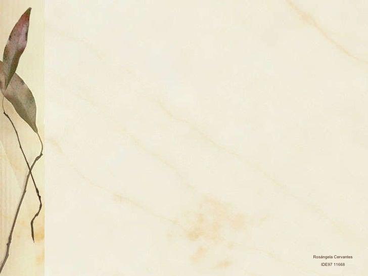 Ejercicio de pelvis - 4 2