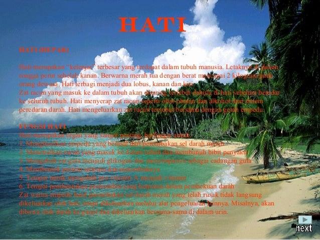 KELAINAN-KELAINAN PADA HATIGangguan pada hati yang umumnya dijumpai di masyarakat saat iniadalah HEPATITIS atau PENYAKIT K...
