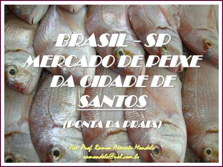 BRASIL - SP <br />MERCADO DE PEIXE<br />DA CIDADE DE <br />SANTOS<br />(PONTA DA PRAIA)<br />SANTOS<br />Por: Prof. Ramon ...