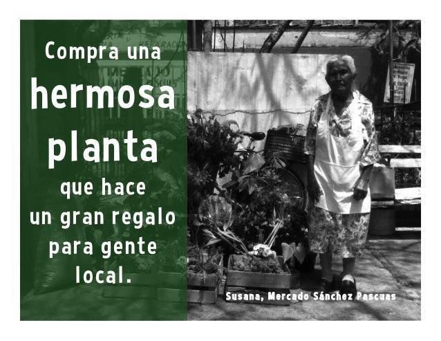 Estos mercados juegan un papel bien importante para la gente índigena de Oaxaca. Para los visitantes, los mercados son por...