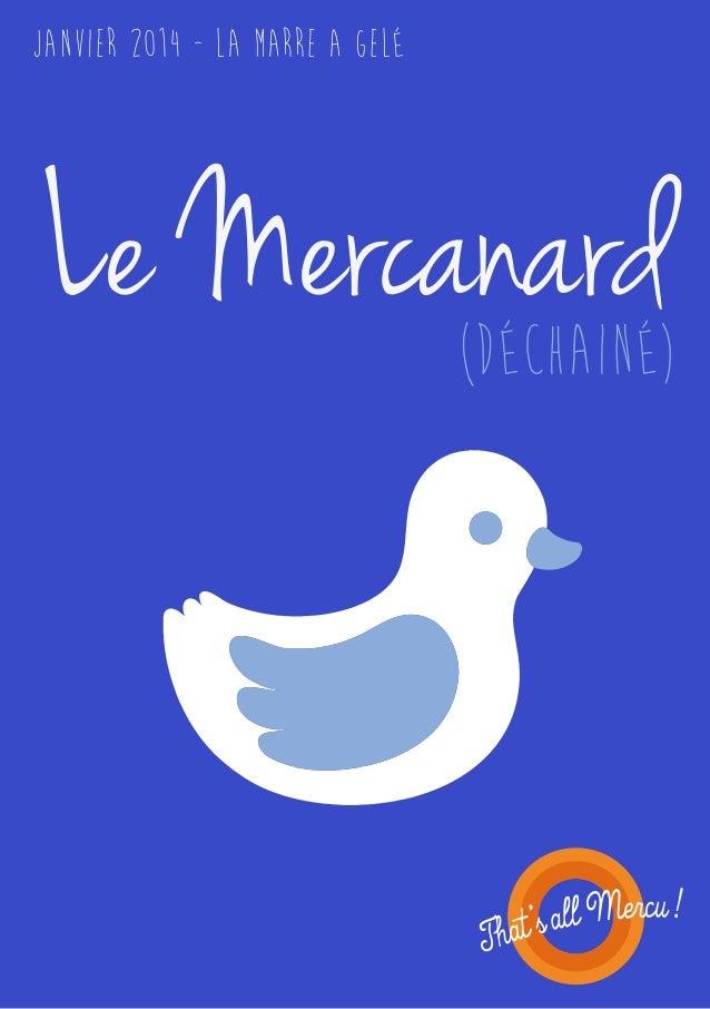 Janvier 2014 - La marre a gelé  Le Mercanard (Déchainé)