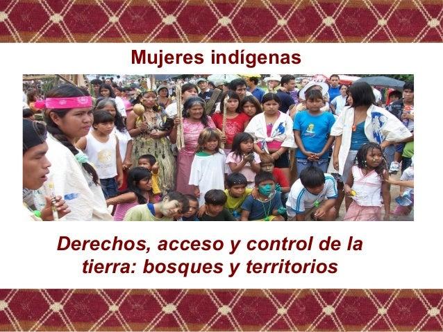 Mujeres indígenas. Derechos, acceso y control de la tierra, bosques y territorios