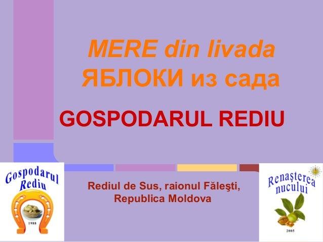 MERE din livada ЯБЛОКИ из садаGOSPODARUL REDIU  Rediul de Sus, raionul Făleşti,      Republica Moldova