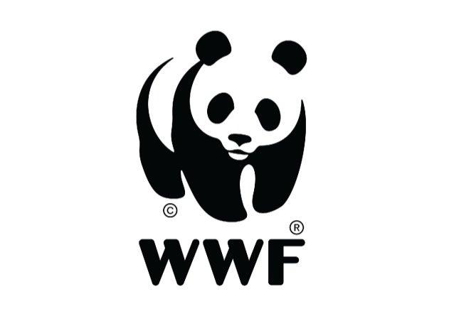 En caso de un logotipo explicarse por sí mismo? Es  sólo mediante la asociación con un producto, un ser-vicio,  un negocio...