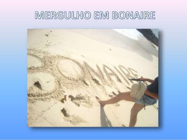 Um pouco de Bonaire Bonaire é uma ilha bem pequena e fantástica localizada no mar do caribe, vizinha de Aruba e Curaçao. F...