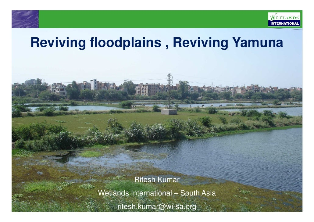 Reviving floodplains , Reviving Yamuna                         Ritesh Kumar           Wetlands International – South Asia ...